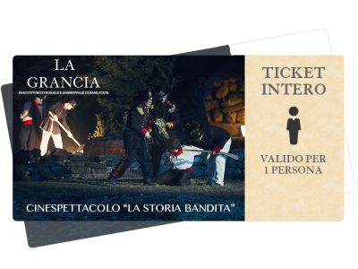 ticket-intero6